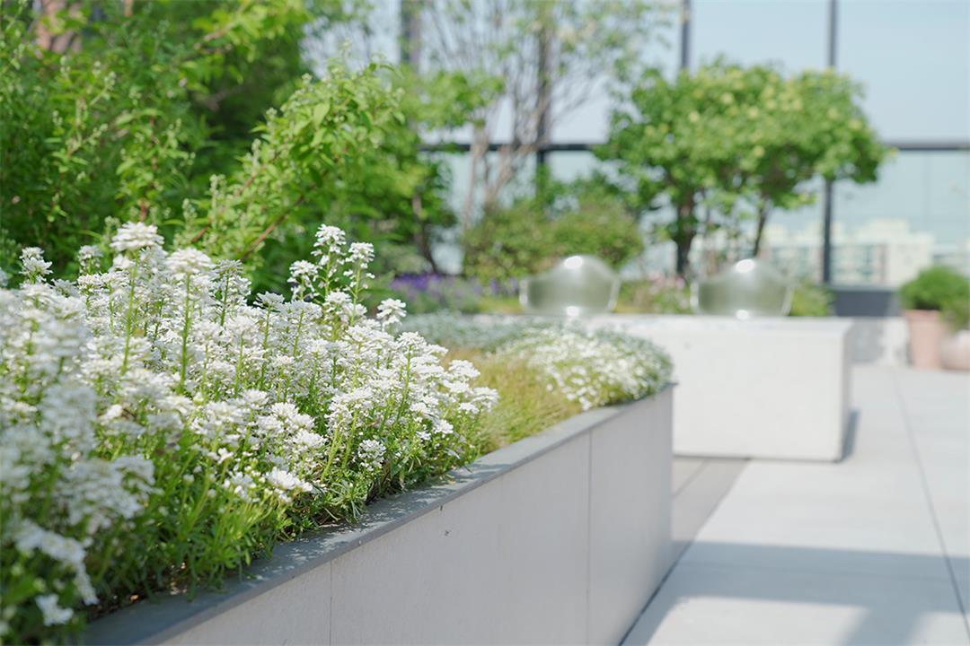 韩国设计, 会所设计, 豪宅设计, 国外办公空间设计,会所设计方案,会所设计图片