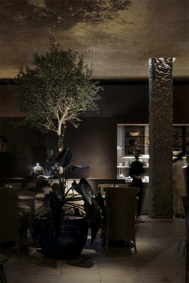 咖啡馆绿植光影场景