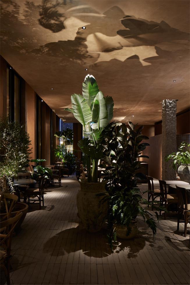 咖啡馆绿植盆栽设计