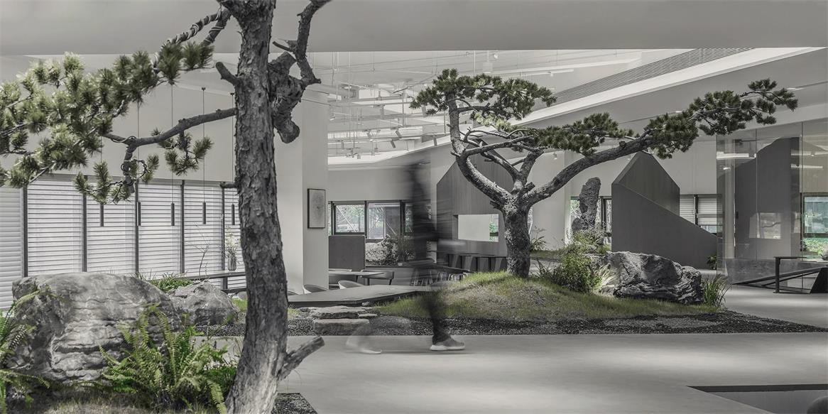共享办公走在树木景观中的人影