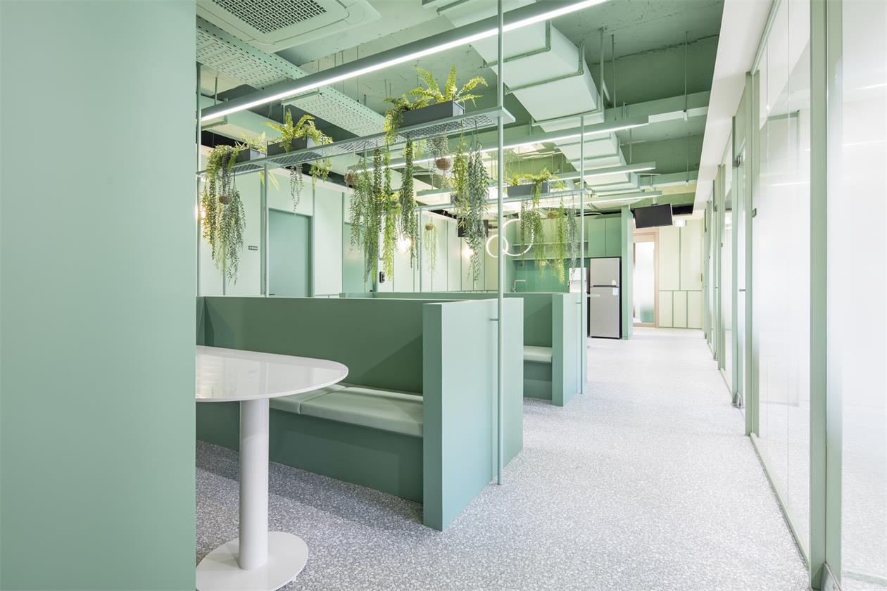办公室绿植隔断及天花设计
