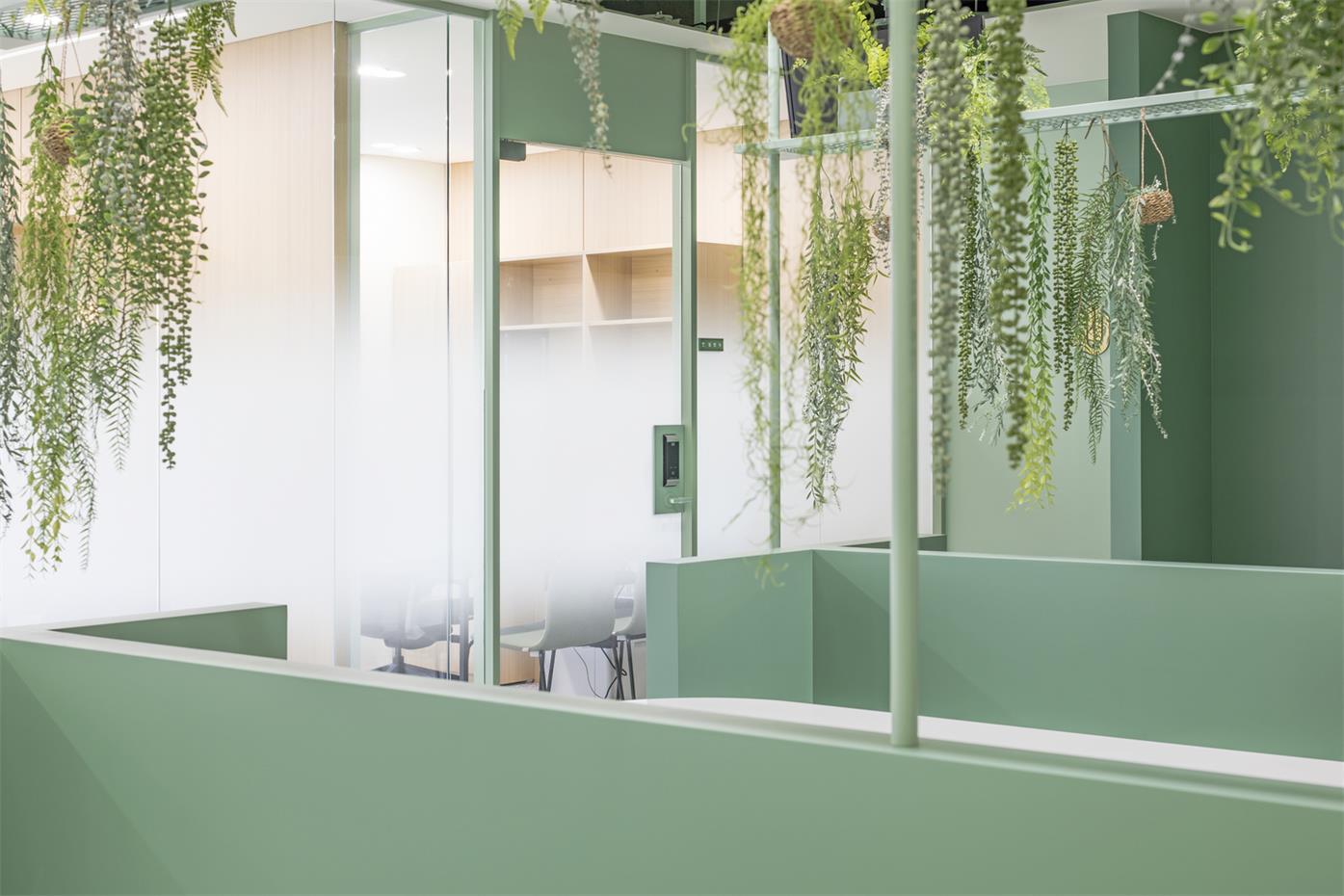 办公室卡座绿色矮墙设计