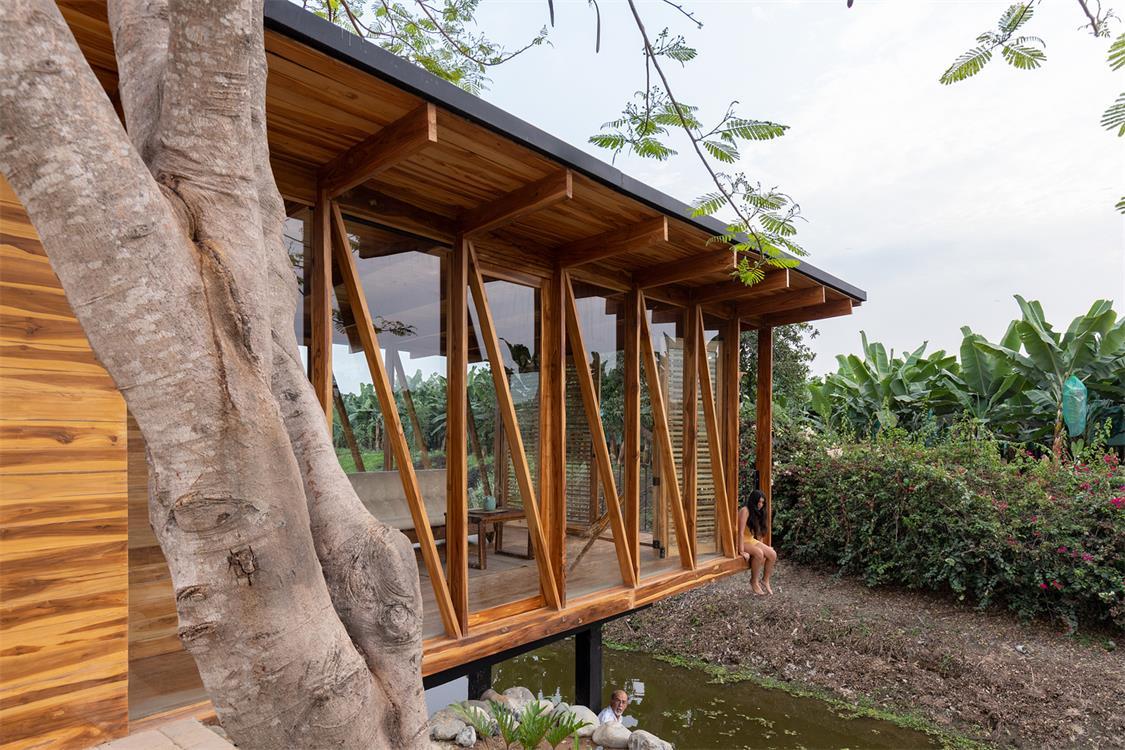 从茶室旁边的树木望向茶室侧面场景