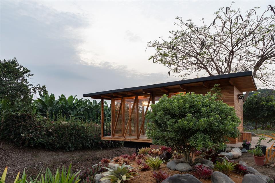 茶室周边的绿植环境