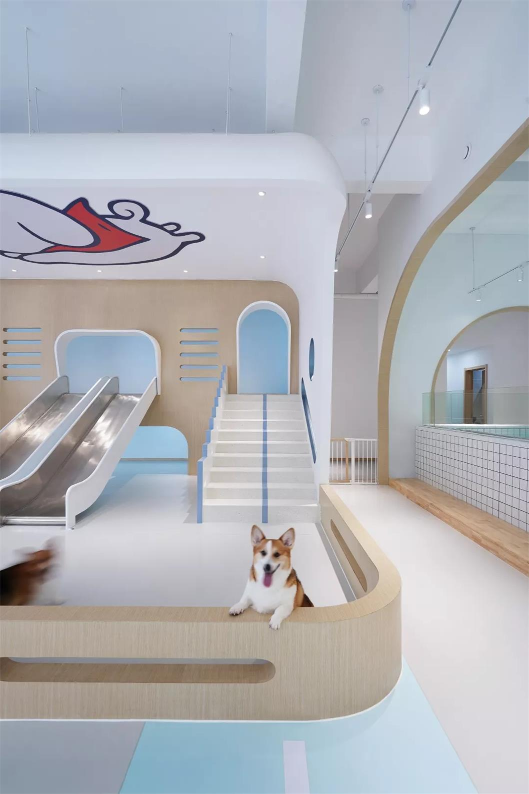 宠物乐园设计